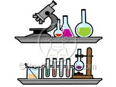 Write Online: Lab Report Writing Guide - Introduction
